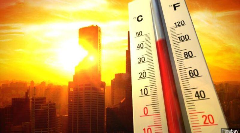 cel mai calduros an